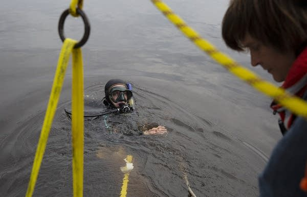 A diver with a mask breaks through the water.