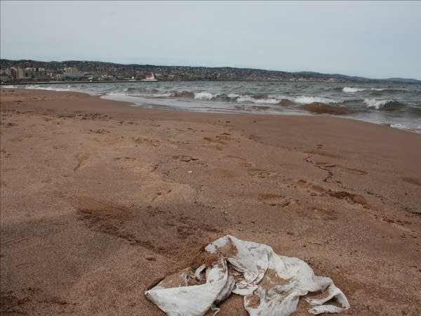 plastic bag on Lake Superior beach