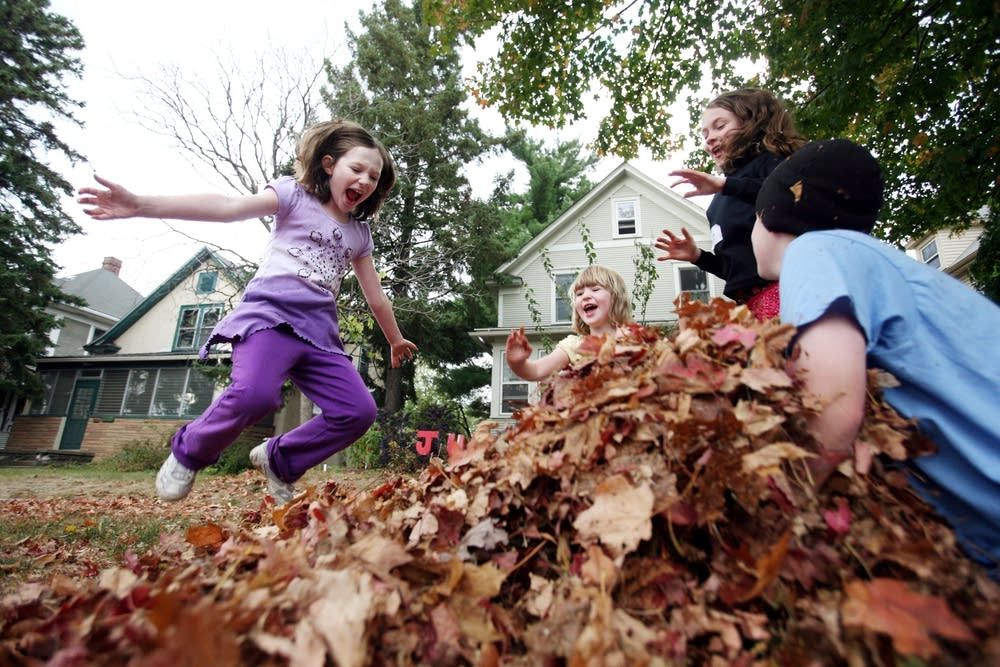 Community leaf pile