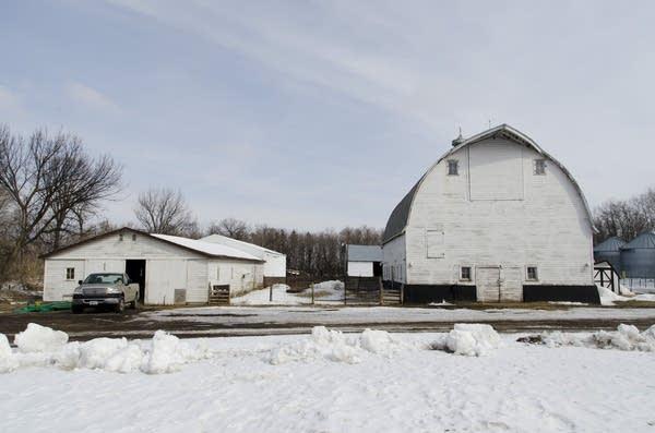 Junior Farder's farm