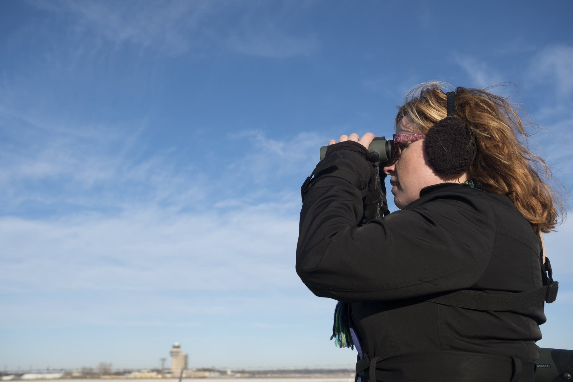 Sharon Stiteler scans for snowy owls