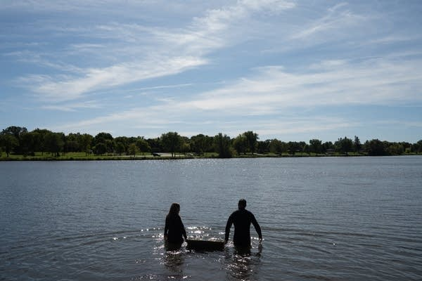 Two people wade into a lake holding a box between them.