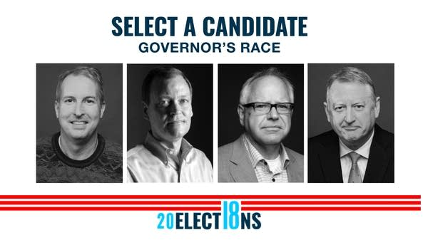 Four gubernatorial candidates will be on the general election ballot.