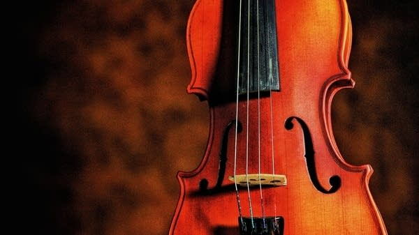 The viola is a part of the stringed instrument family.