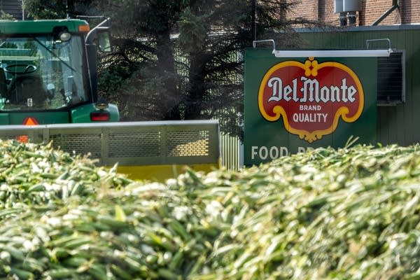 After Del Monte closure stuns Sleepy Eye, town's future uncertain
