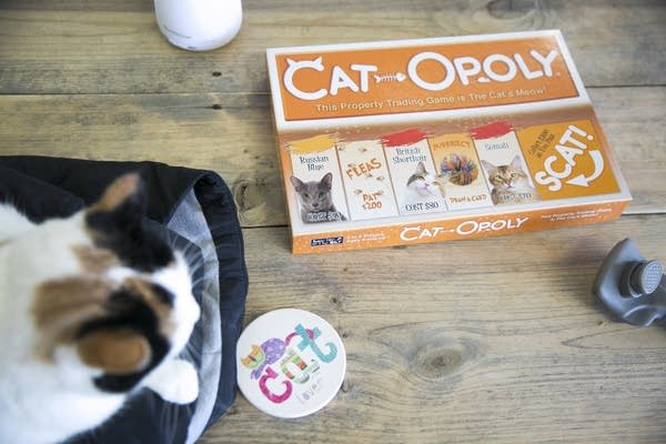 Cat themed coasters, books and games line the cat lounge
