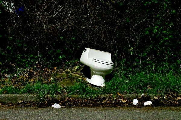 Abandoned toilet in the weeds on street curb
