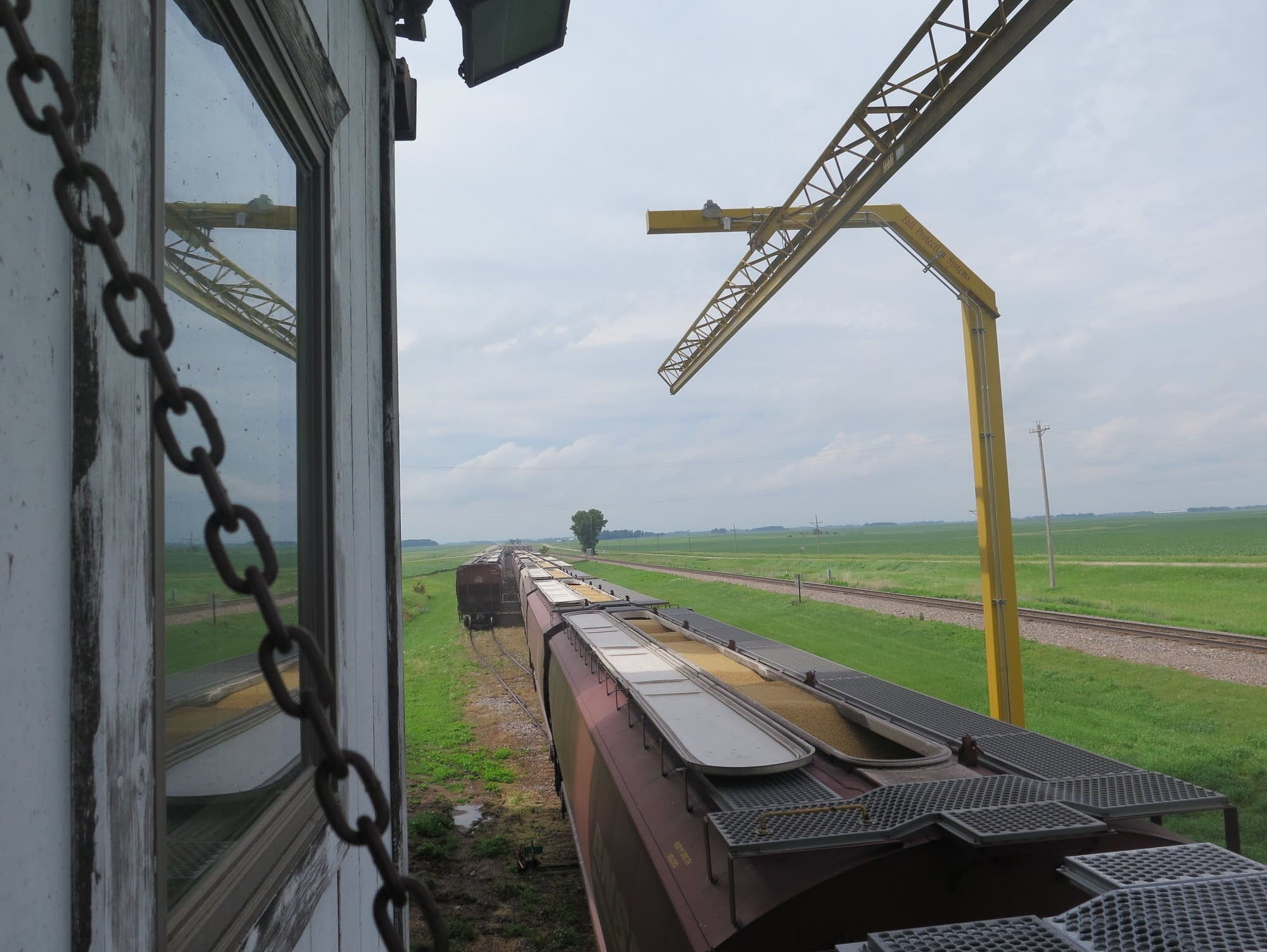 Soybeans are loaded onto a train at the Farmers Cooperative Elevator