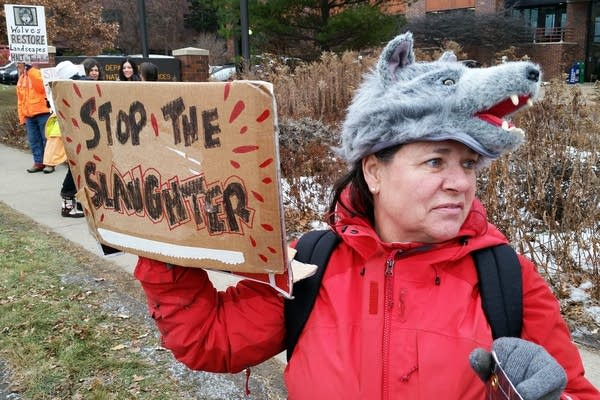 Protesting wolf hunting