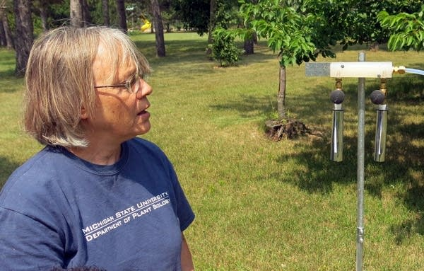 Carol Ashley stands near a pesticide drift monitor
