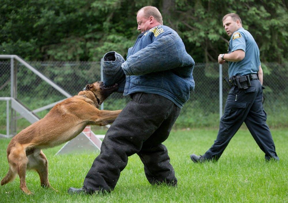 Jesse bites Officer Tad Schmidt