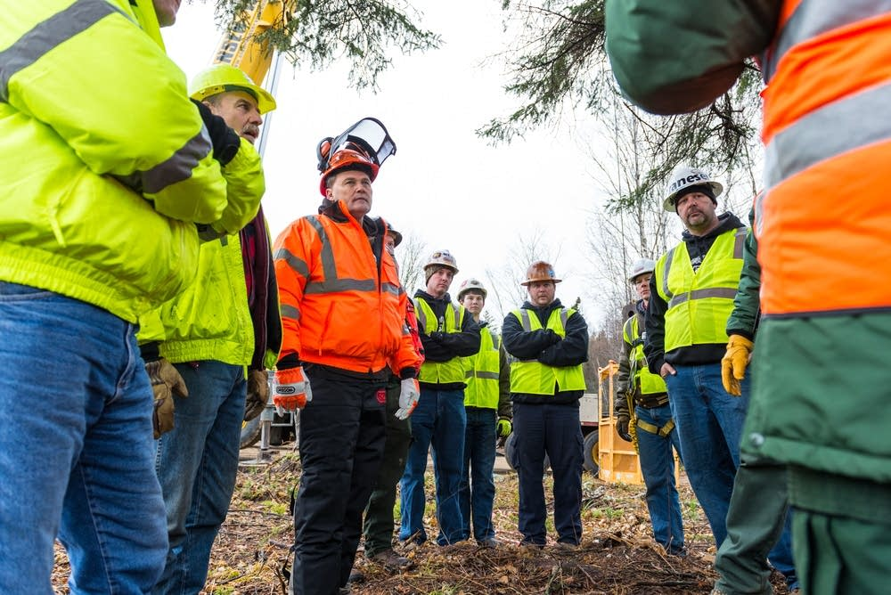Briefing on the tree cutting