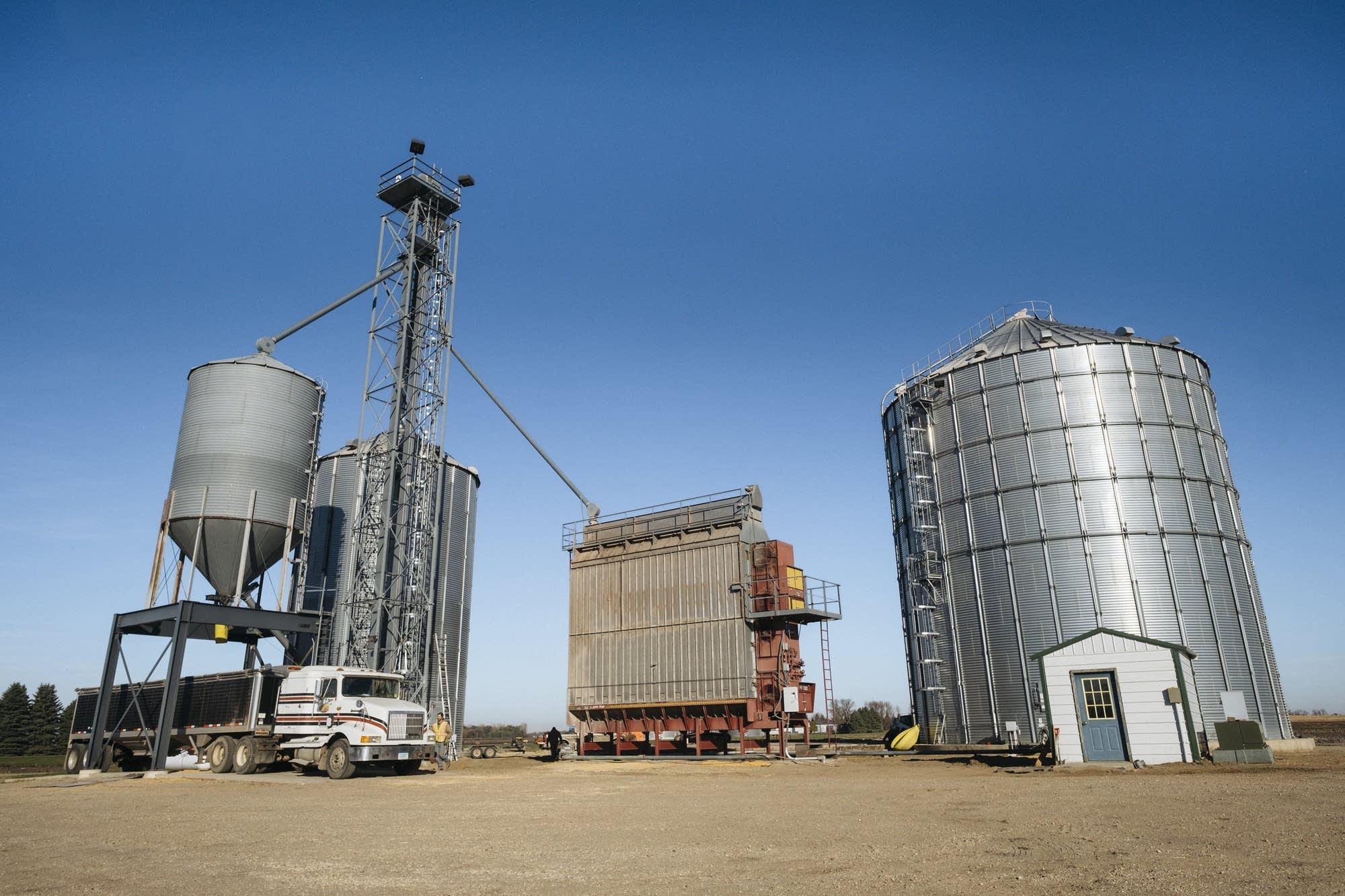 Sean Collins unloads a semi truck full of corn.