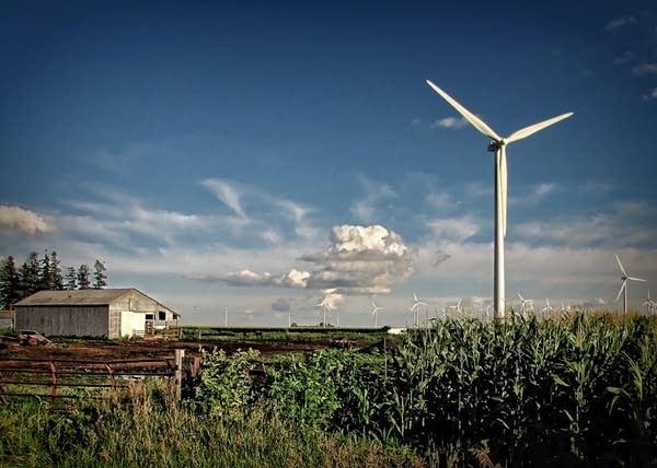 Wind farm in Dodge Center