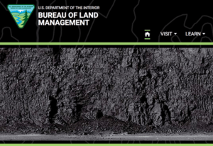 A screenshot of the Bureau of Land Management's home page