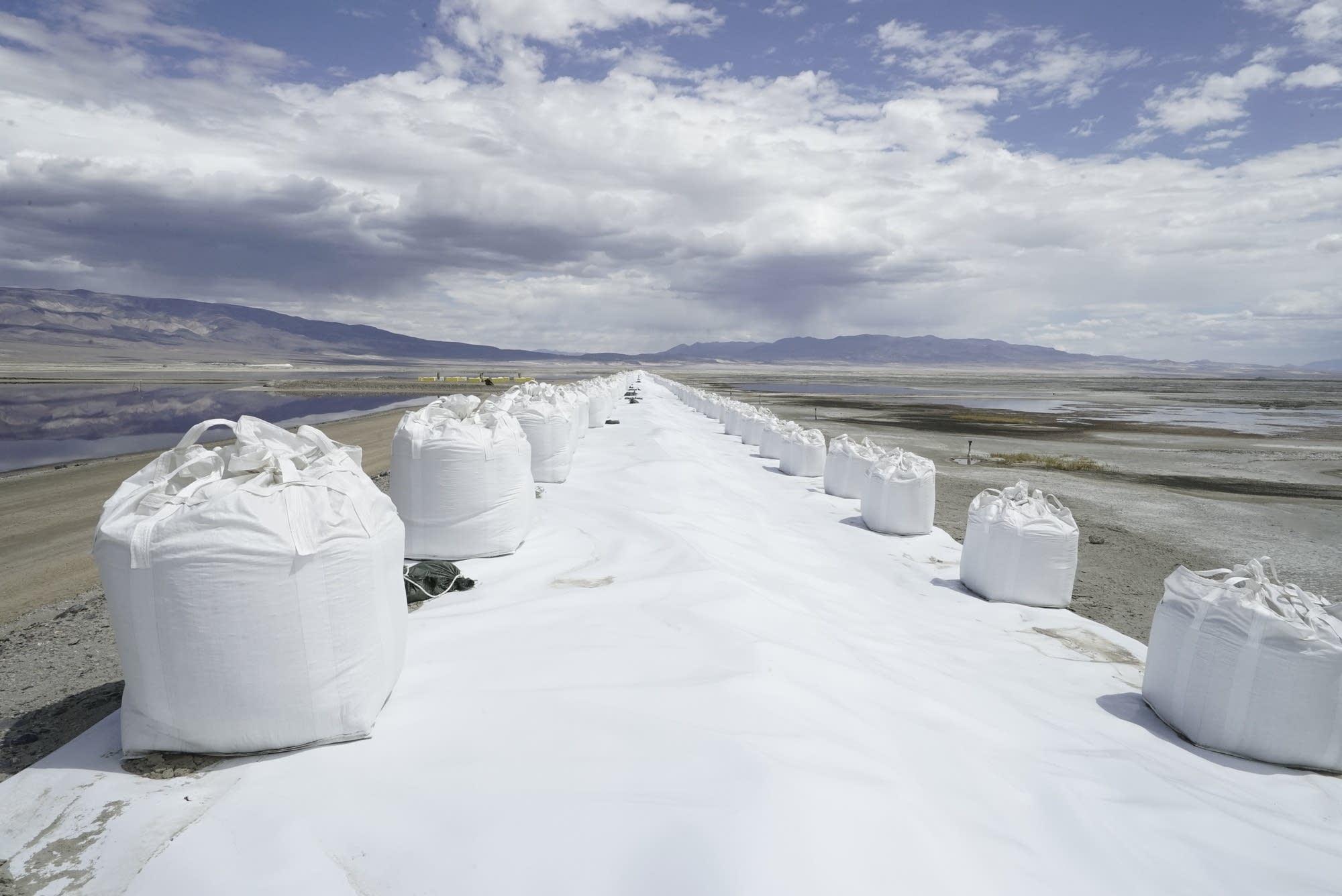 "Alexa Horochowski's exhibition ""Beautiful Sky."""