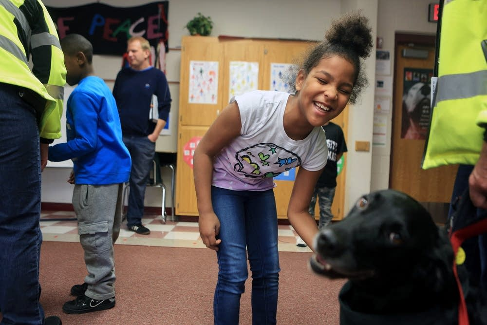 Therapy dog meeting