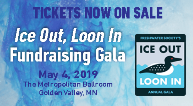 Ice out loon 2019