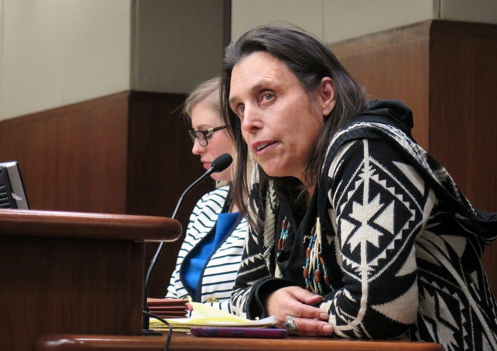 Winona LaDuke at the hearing on water standards.