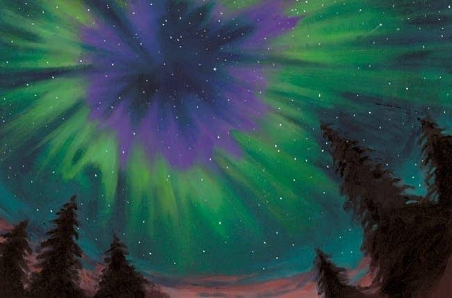 'Under the Night Sky'
