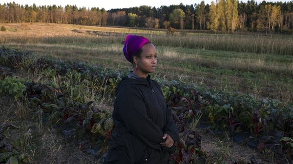 Naima Dhore stands in her field of Swiss chard