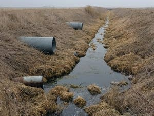 Ditch outside Des Moines with high nitrate levels.