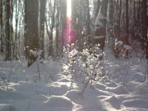 Winter in Levering, Michigan