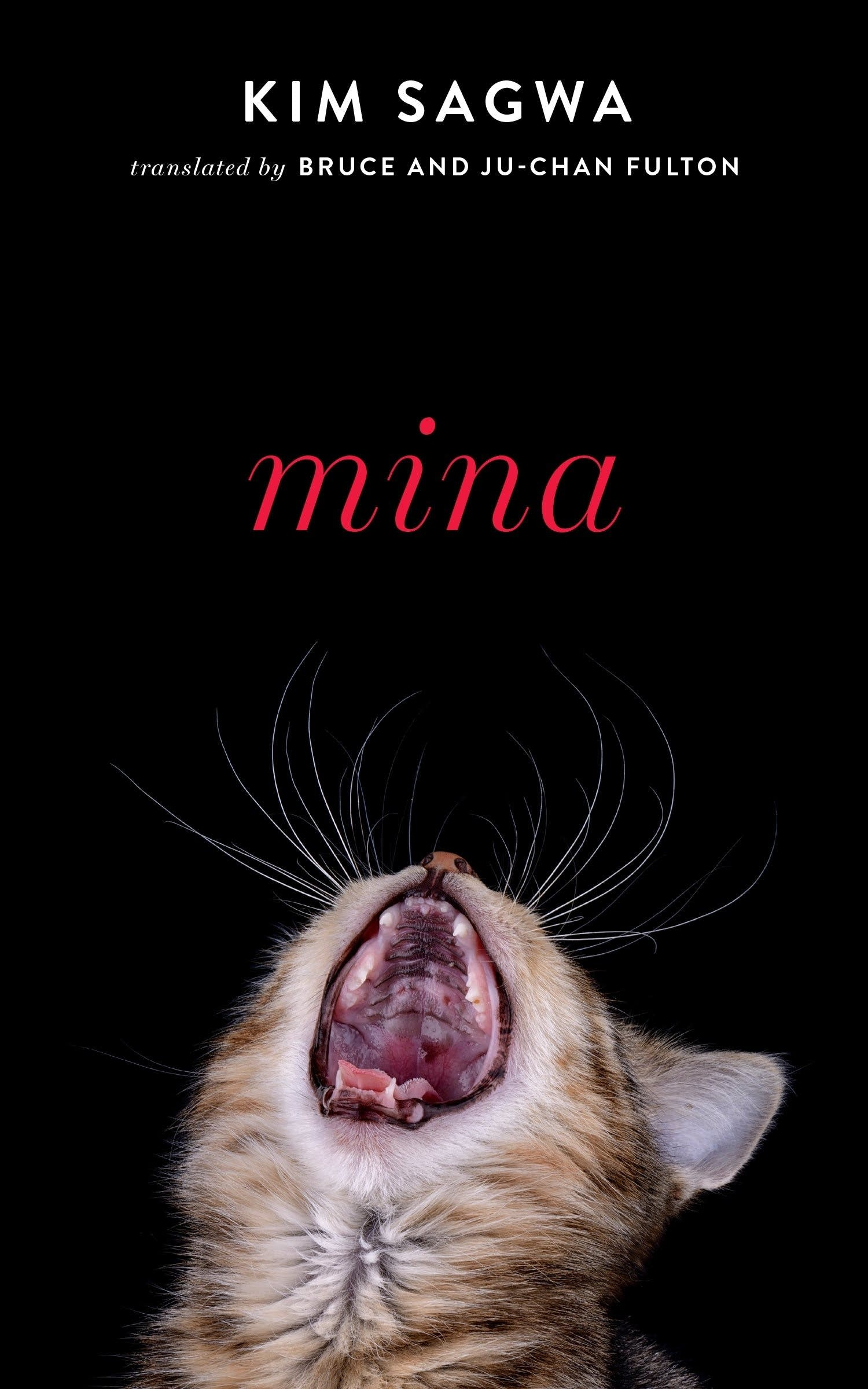 'Mina' by Kim Sagwa