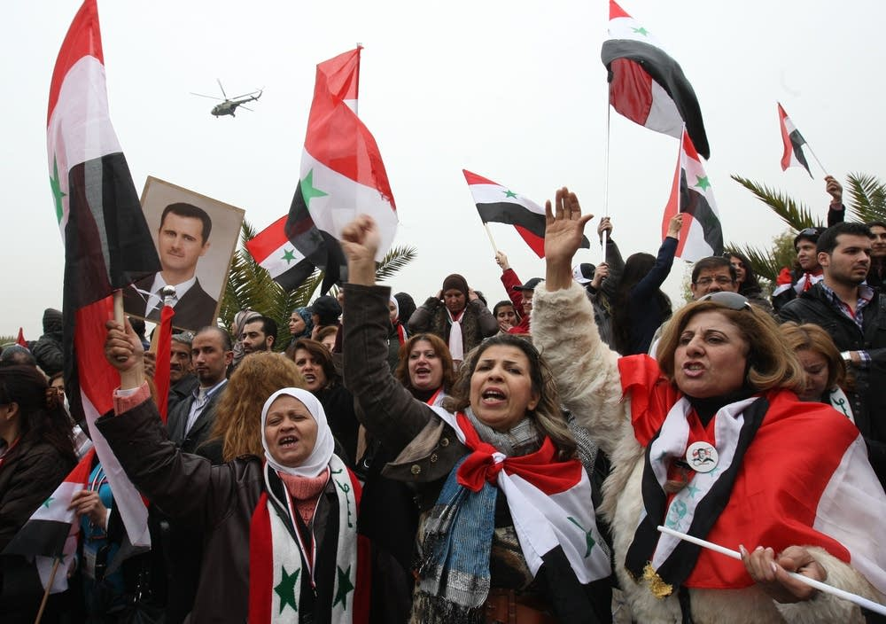 Syrian pro-government protesters