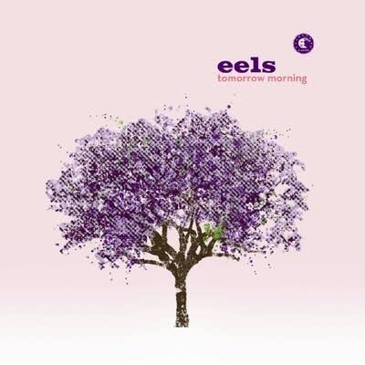 Ea798e 20120926 eels  tomorrow morning
