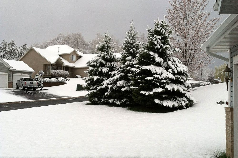 May snow in Woodbury