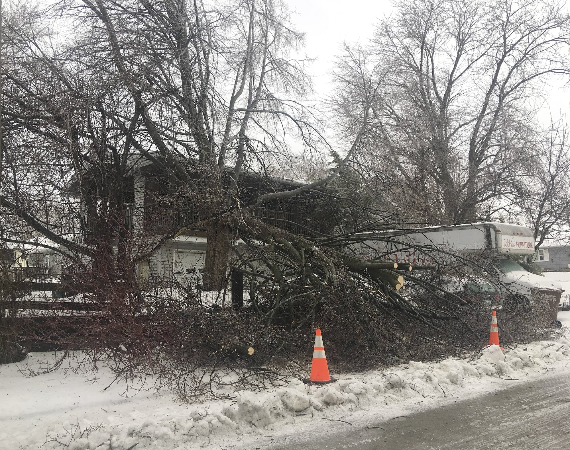 A tree was down in front of a house on Marie Avenue in Albert Lea, Minn.