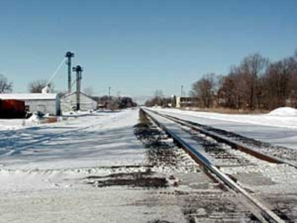Tracks through Big Lake