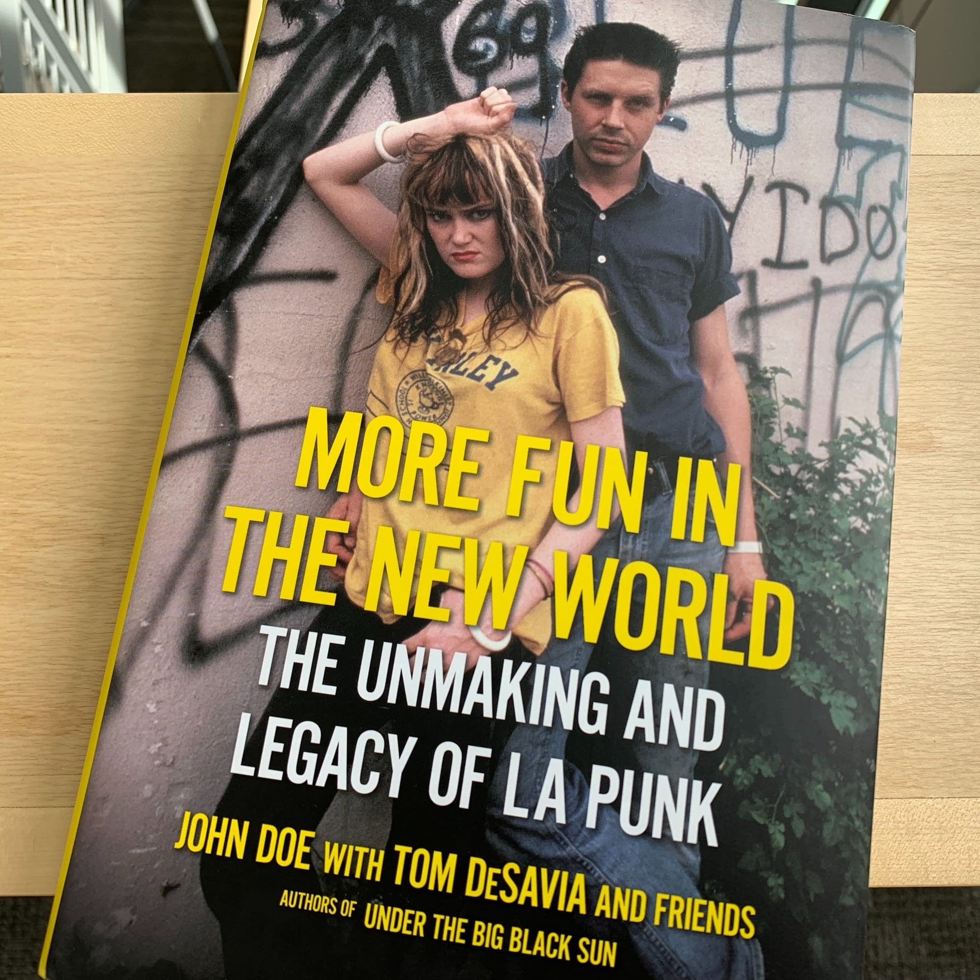 'More Fun in the New World: The Unmaking and Legacy of L.A. Punk.'
