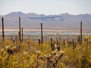 Colorado river storage basins