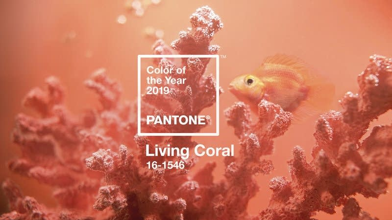 Living coral is the Pantone Color Institute's color of the year for 2019.