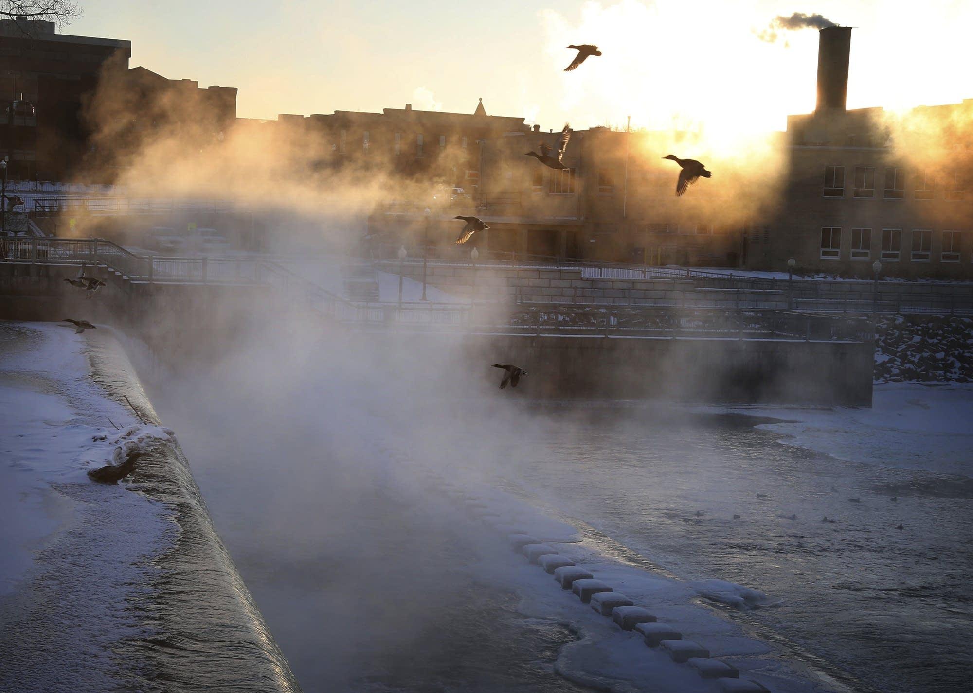 Birds take flight over the frigid waters below the Rum River Dam.