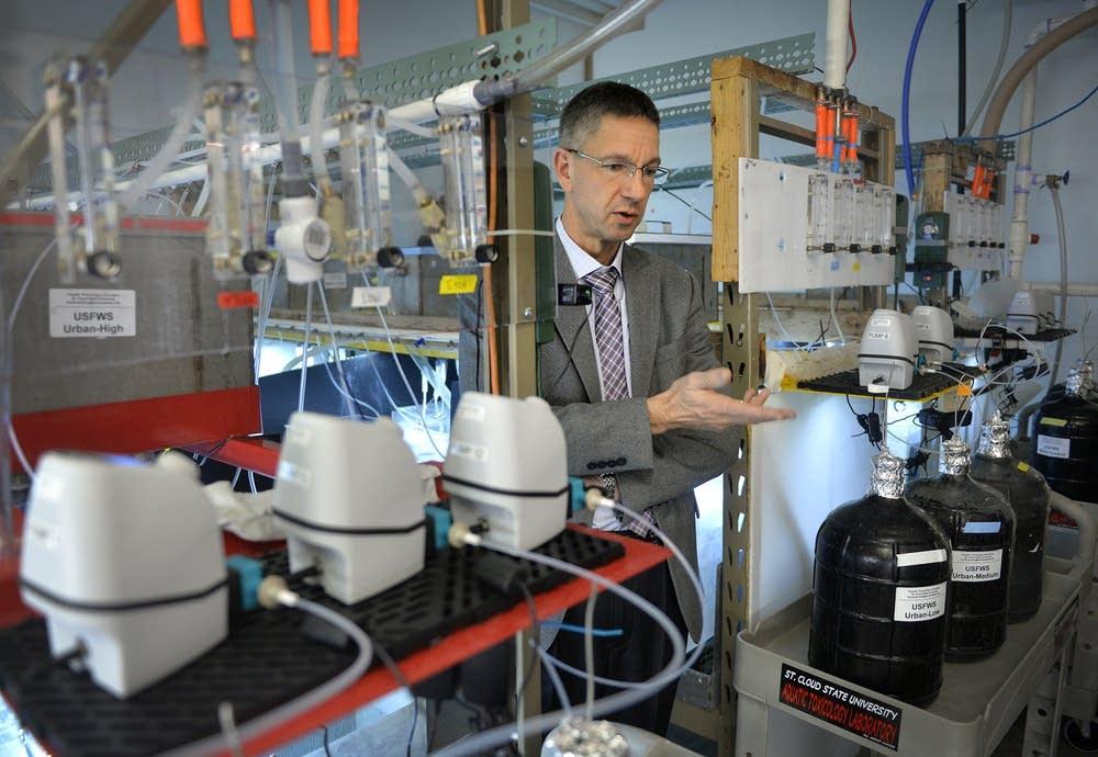 Professor Heiko Schoenfuss