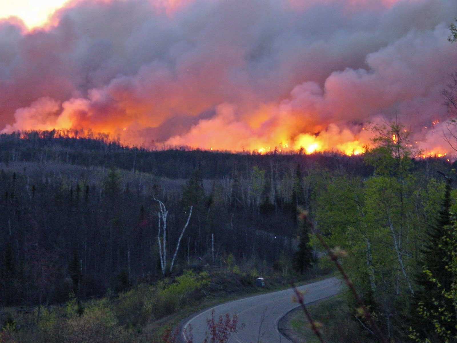 A view of the fire looking west just past Gunflint Lake Rd. on May 9, 2007.