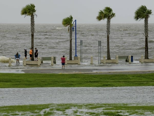 People check out the waves on Lakeshore Drive in New Orleans