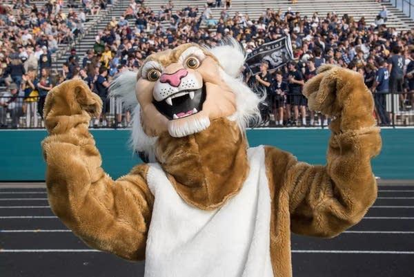 The St. Ignatius Wildcat's mascot