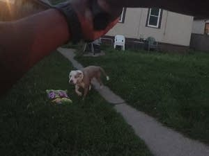 This image taken from police body cam video shows officer's weapon raised.