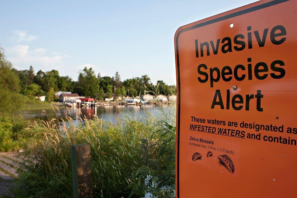 Zebra mussel warning