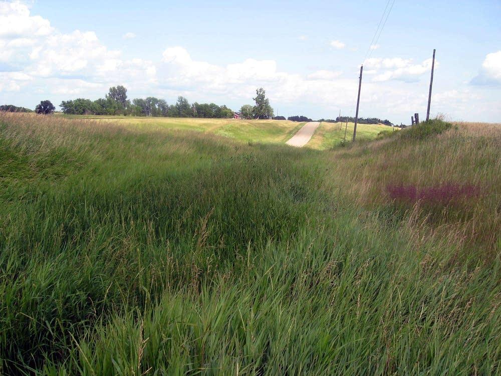 Runoff ditch