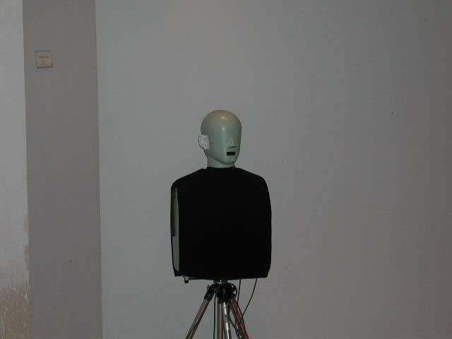Head and torso simulator