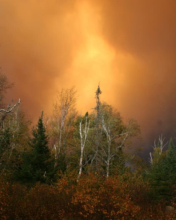 Pagami Creek Fire in the Boundary Waters Canoe Area