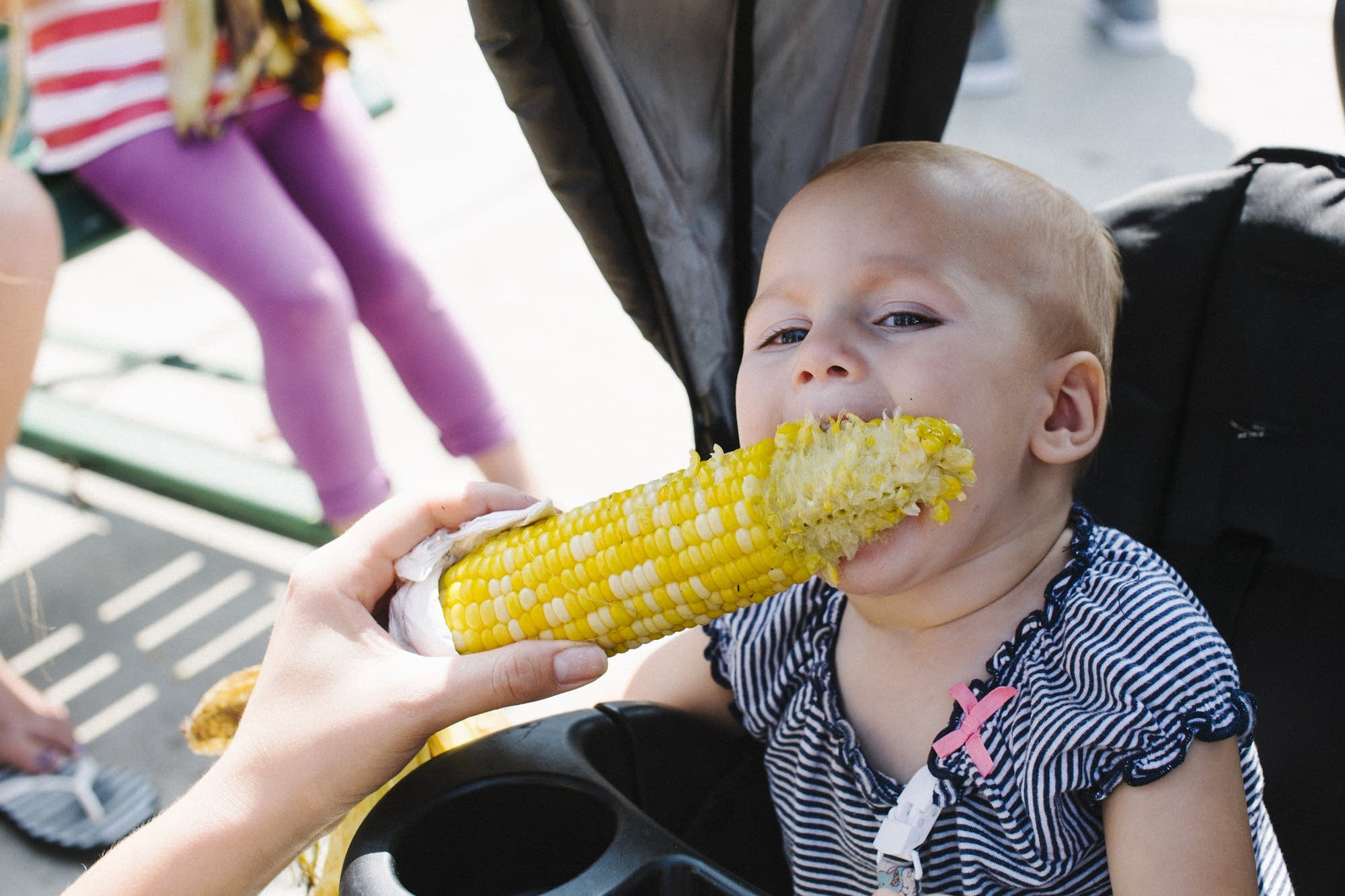 Fourteen-month-old Zola uses all 4 of her teeth to eat an ear of corn.