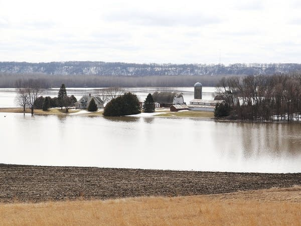 A farm is surrounded by the floodwaters of the Minnesota River