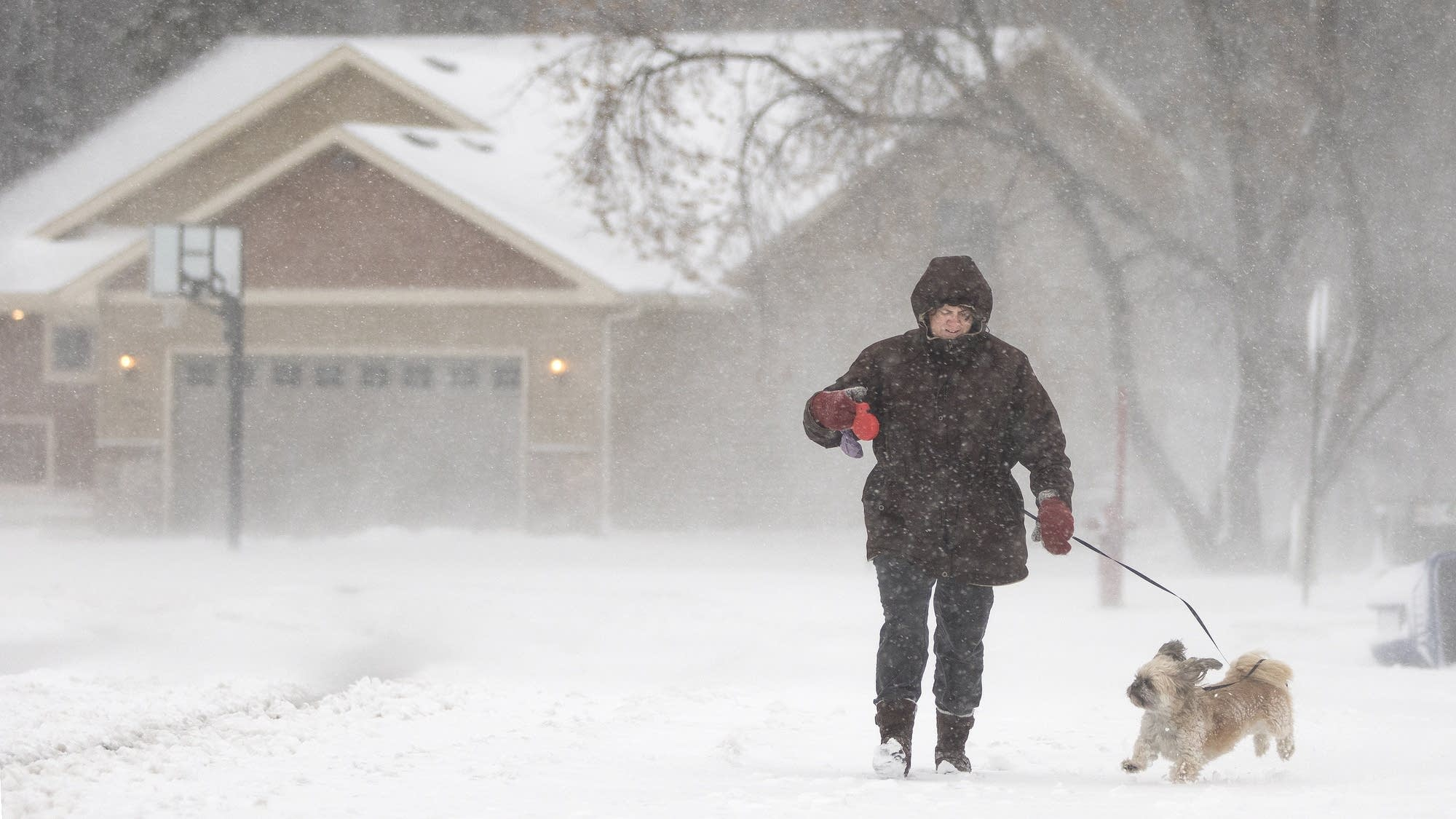 Char Murphy walks Bailey in the St. Cloud snow.
