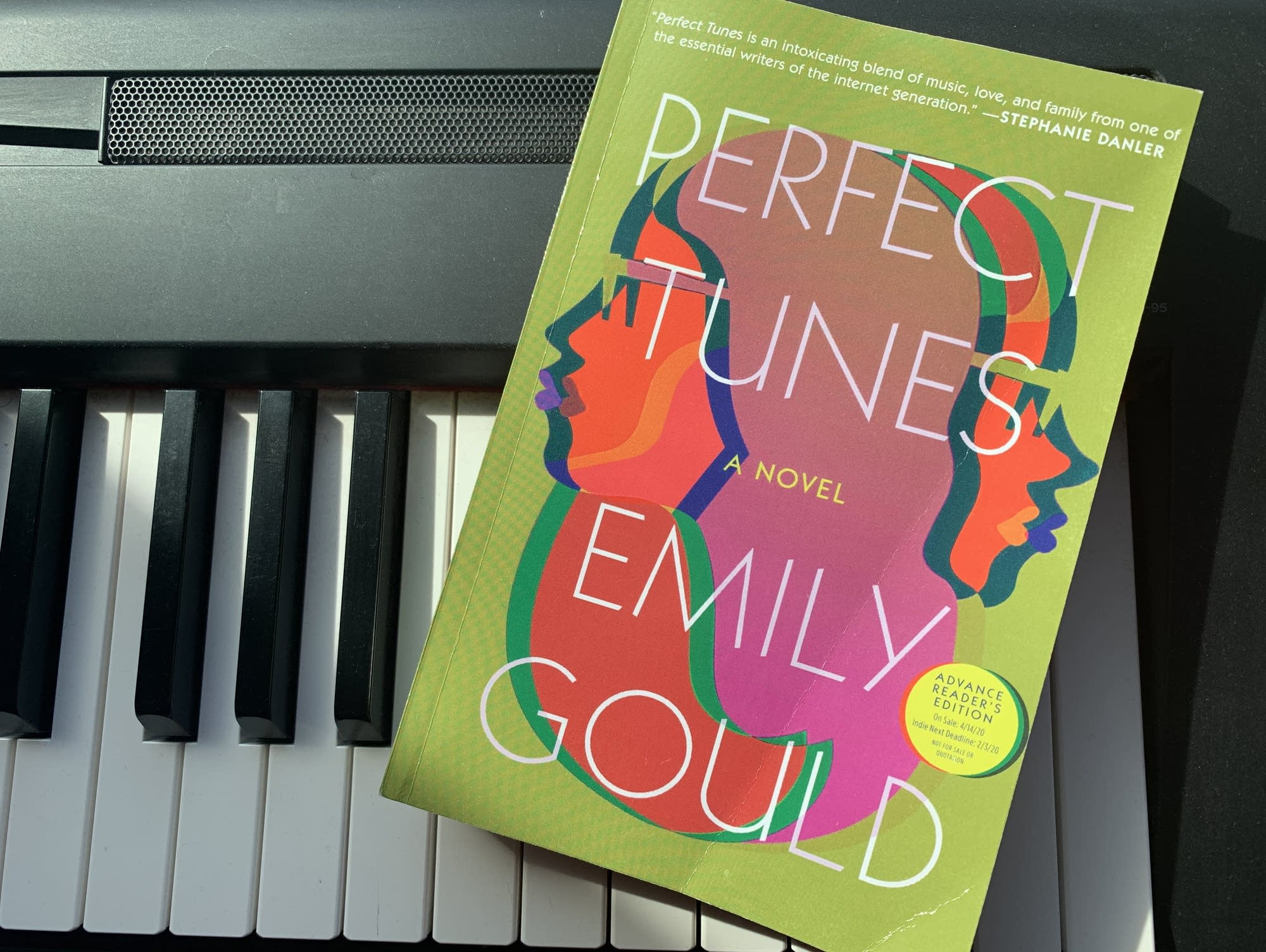 Emily Gould's 'Perfect Tunes.'